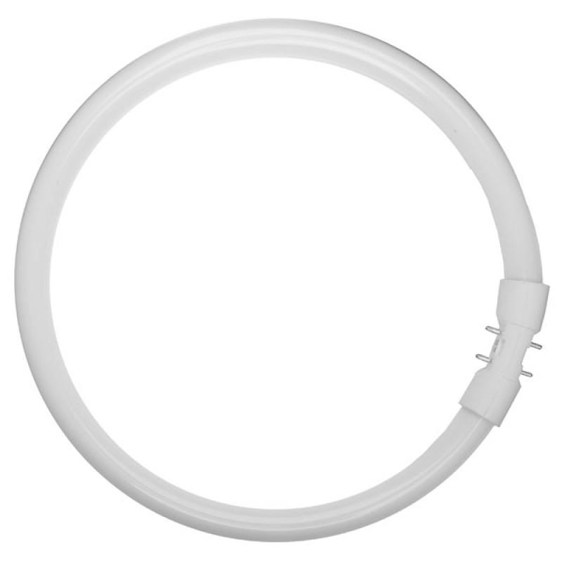 Tubo fluorescente circular t5 55w 840 cool white 4200lm de - Tubo fluorescente circular ...