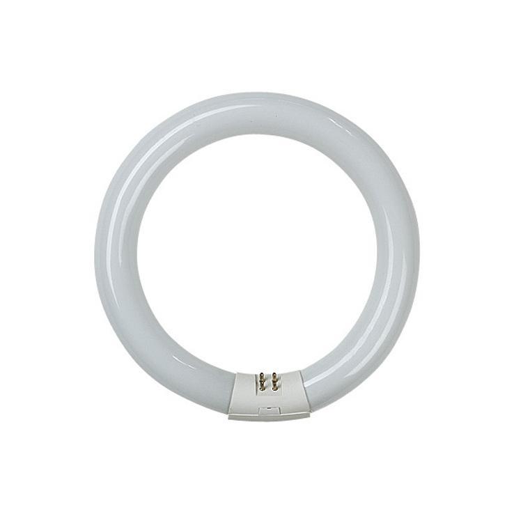 Tubo fluorescente circular t8 22w 865 1300lm luz dia de for Tubo fluorescente circular 32w